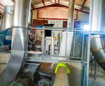 Get Automated End-End Cassava Starch Processing Plant from Farm Square Nigeria