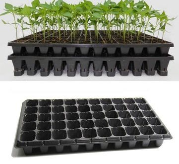 50-seedling-trays-from-farmsquare-nigeria
