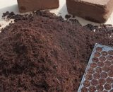 cocopeat from farmsquare
