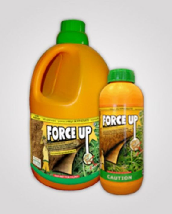 forceup! force up from farmsquare nigeria