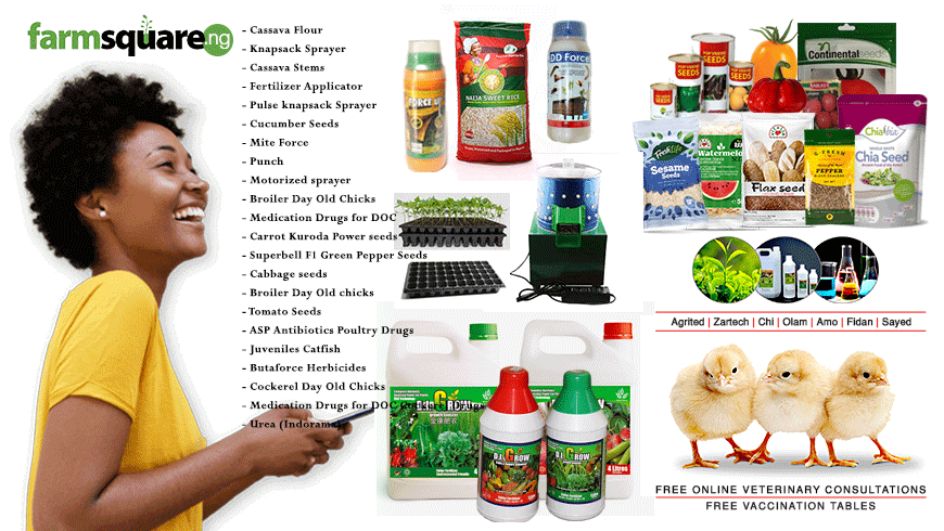 Farmsquare-nigeria-best-online-agricultural-store-and-marketplace