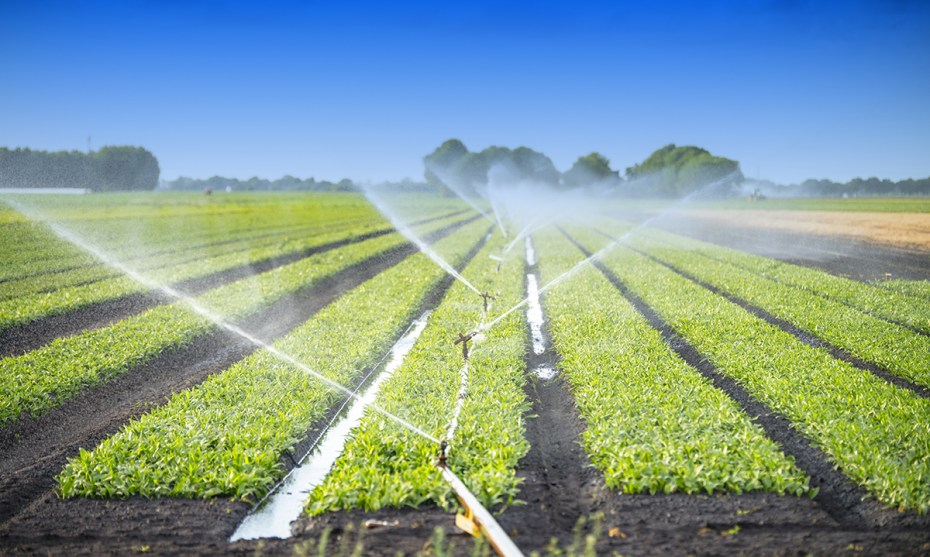 IRRIGATION SYSTEMS: TYPES AND THEIR BENEFITS