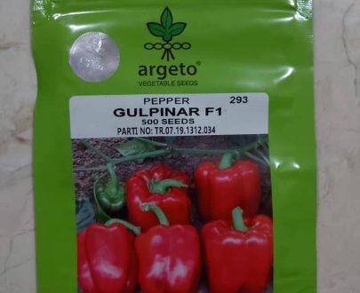 Gulpinar F1 Pepper (Argeto 500 seeds)