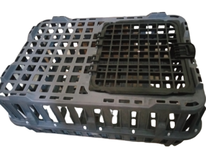 poultry transfer transport crate
