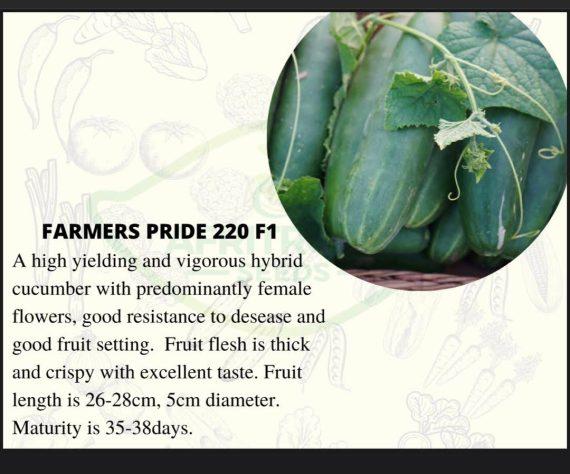 Farmers Pride 220 F1 Cucumber Seeds (10g)