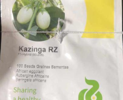 Kazinga RZ F1 (90 – 205 | 1000 seeds)