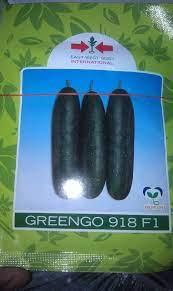 Greengo 918 F1 Cucumber (500 | 1000 Seeds)