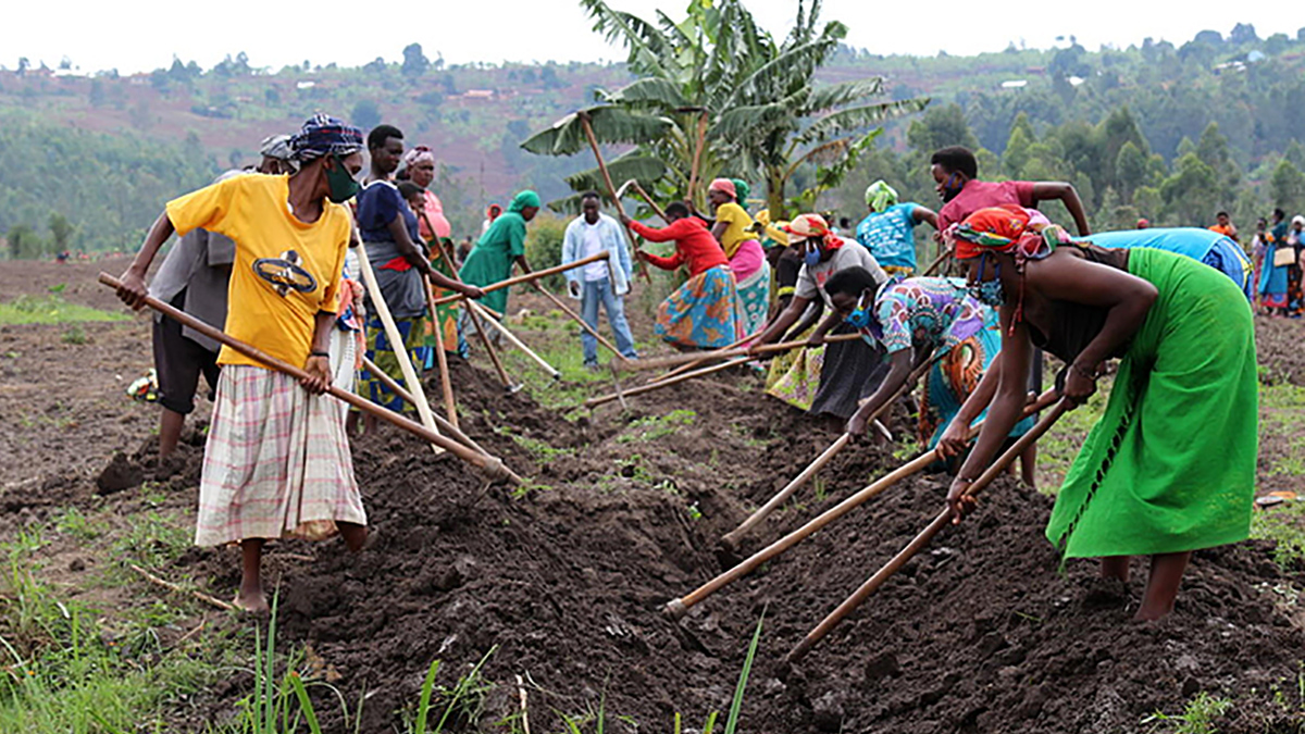 Increasing women's access to farm land
