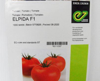 Beef Tomato Elpida F1 Seeds