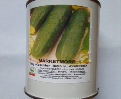 Cucumber Seed Marketmore 100g