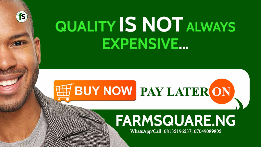 Farmsquare-Quality-is-not-expensive